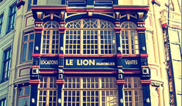 le lion immobilier le chti avis et horaires le lion